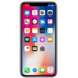 iPhone XS Rear Glass...